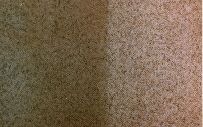 Best Carpet and Upholstery Cleaning