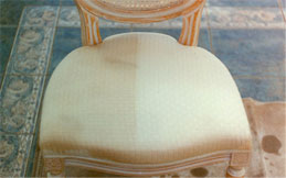 Wisconsin Carpet & Furniture Cleaning Service